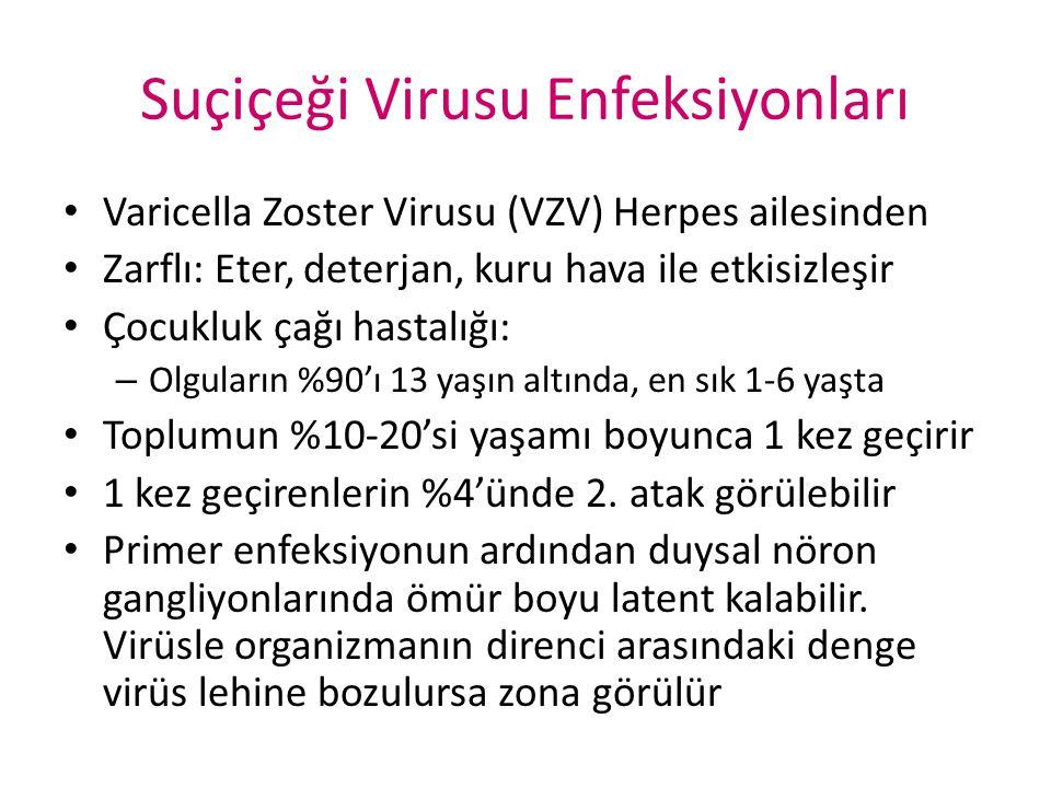 Suçiçeği Virusu Enfeksiyonları