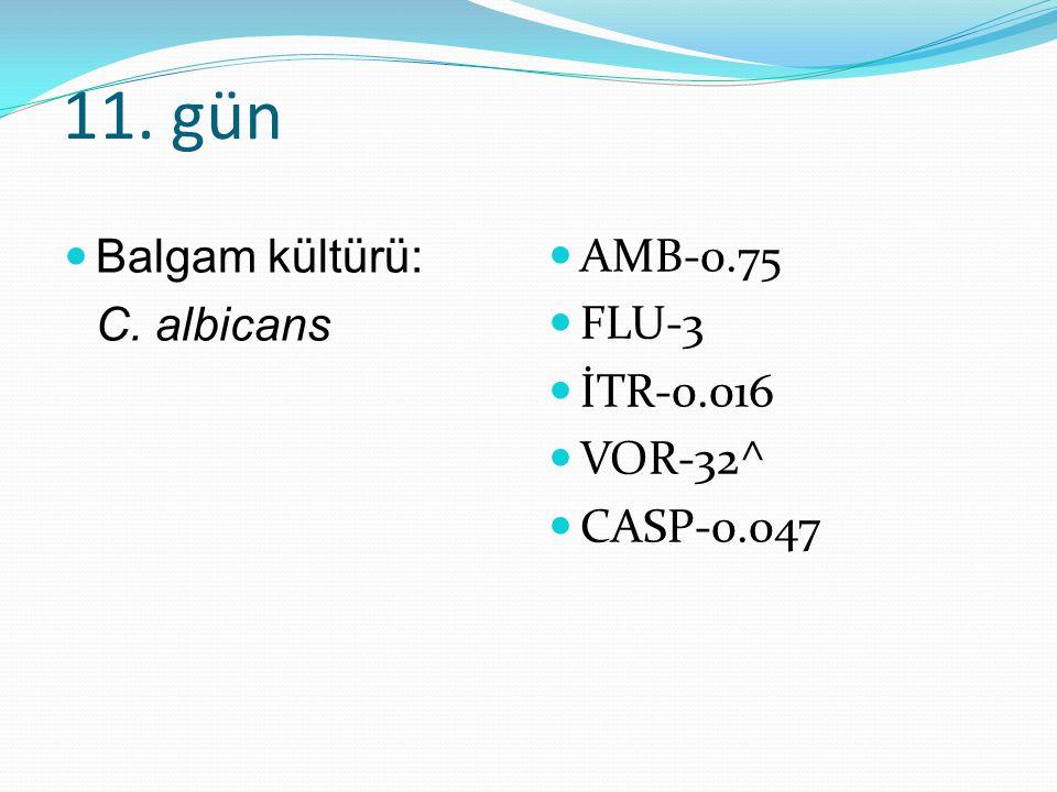 11. gün Balgam kültürü: C. albicans AMB-0.75 FLU-3 İTR-0.016 VOR-32^