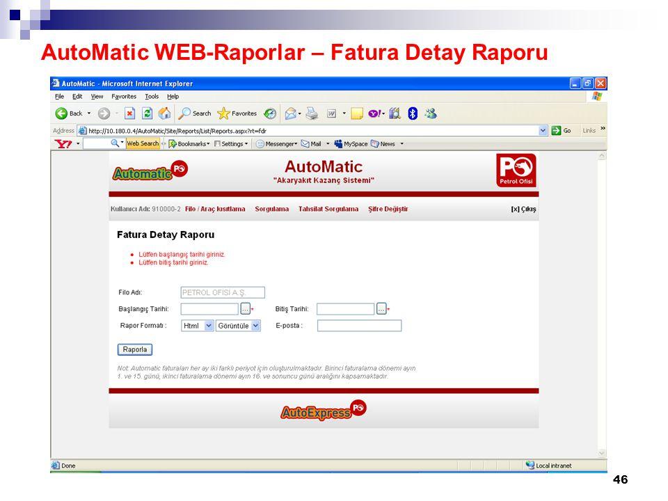AutoMatic WEB-Raporlar – Fatura Detay Raporu
