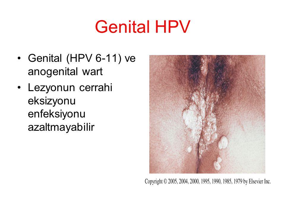 Genital HPV Genital (HPV 6-11) ve anogenital wart