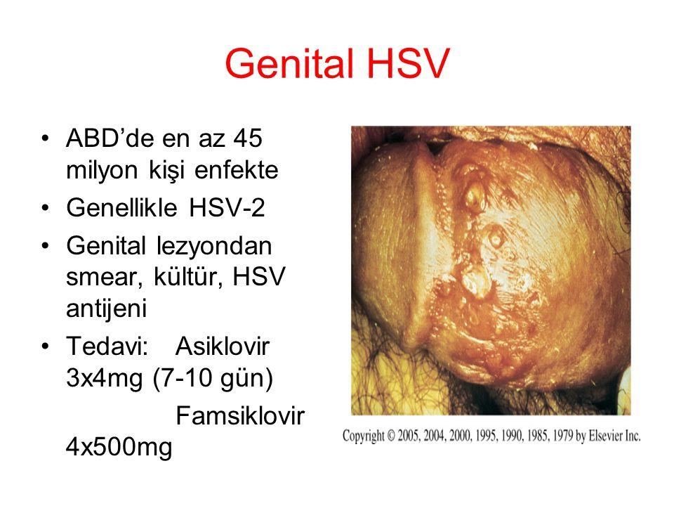 Genital HSV ABD'de en az 45 milyon kişi enfekte Genellikle HSV-2