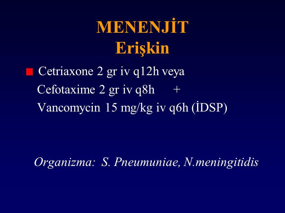 MENENJİT Erişkin Cetriaxone 2 gr iv q12h veya Cefotaxime 2 gr iv q8h +