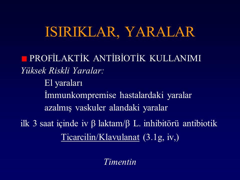 Ticarcilin/Klavulanat (3.1g, iv,)