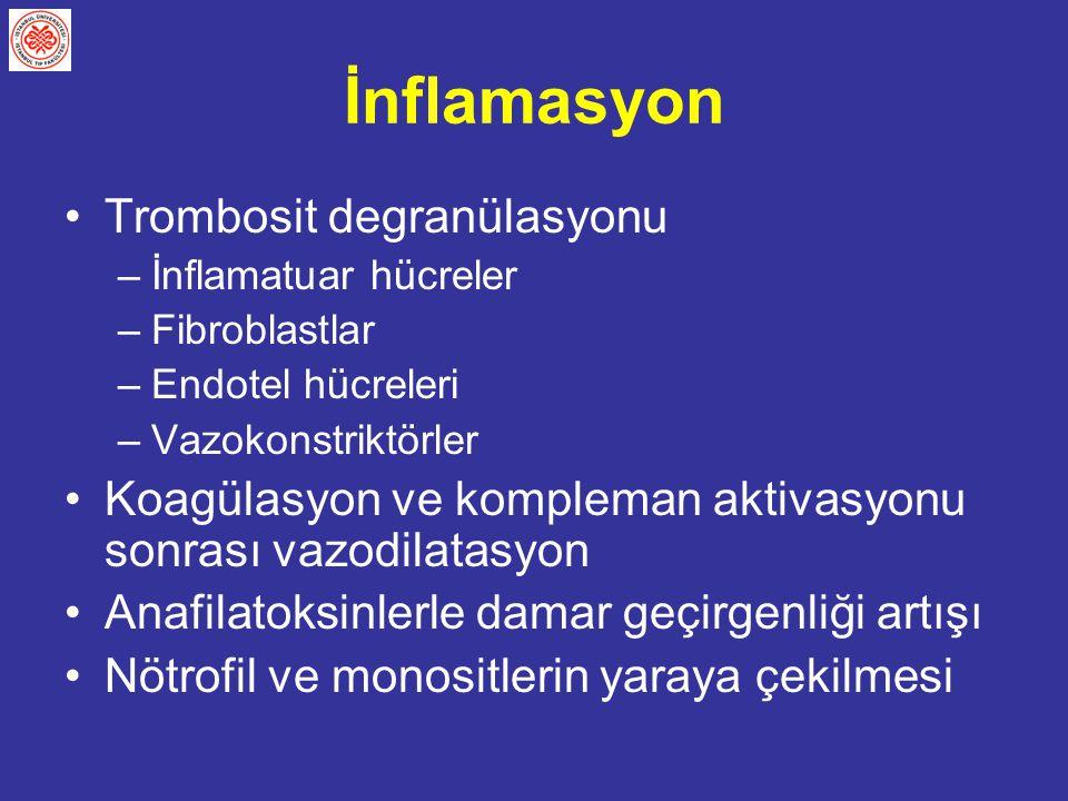 İnflamasyon Trombosit degranülasyonu