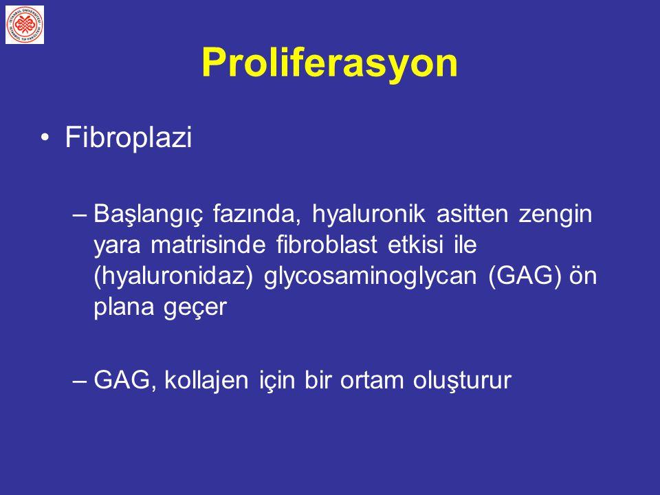 Proliferasyon Fibroplazi