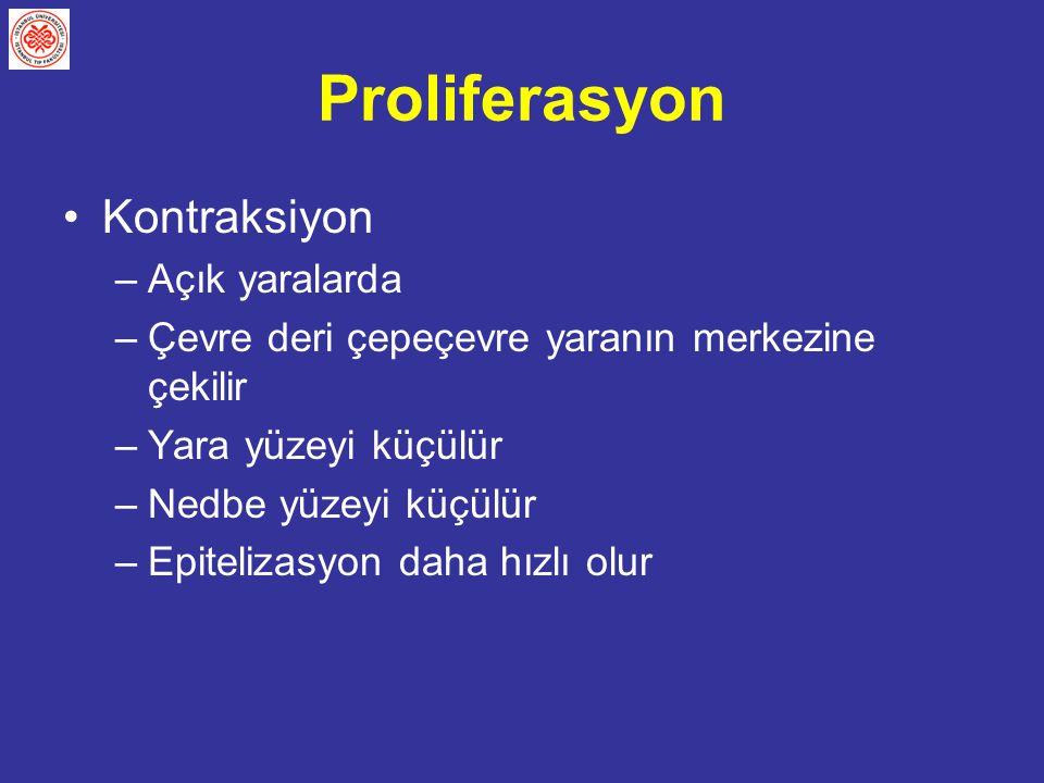 Proliferasyon Kontraksiyon Açık yaralarda