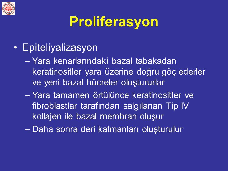 Proliferasyon Epiteliyalizasyon
