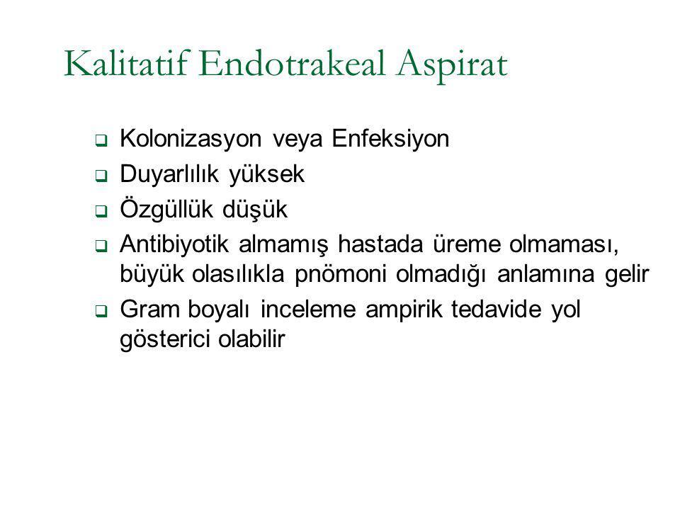 Kalitatif Endotrakeal Aspirat