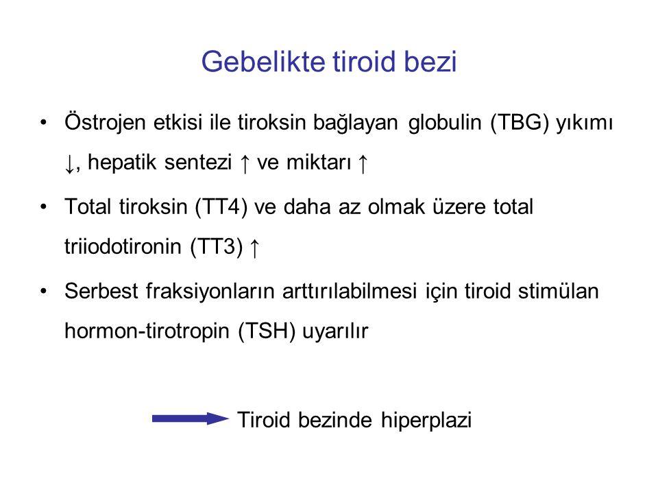 Gebelikte tiroid bezi Östrojen etkisi ile tiroksin bağlayan globulin (TBG) yıkımı ↓, hepatik sentezi ↑ ve miktarı ↑