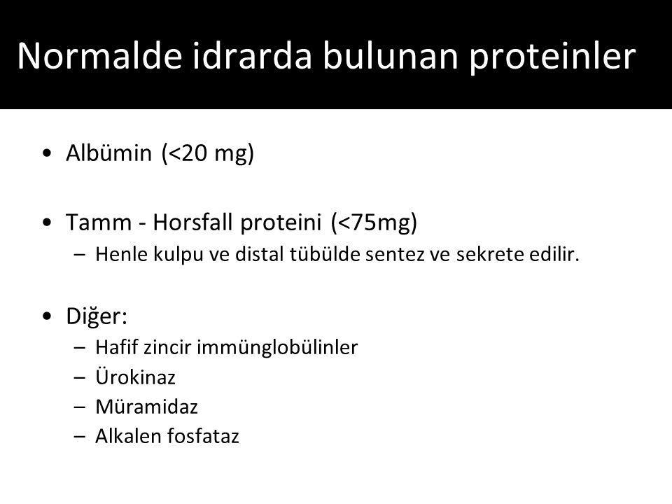Normalde idrarda bulunan proteinler
