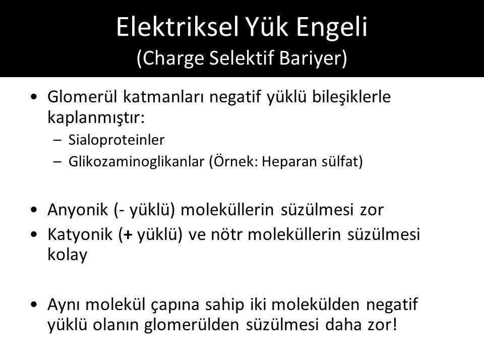 Elektriksel Yük Engeli (Charge Selektif Bariyer)