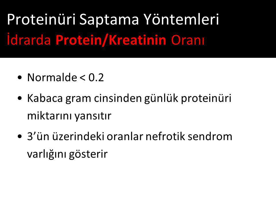 Proteinüri Saptama Yöntemleri İdrarda Protein/Kreatinin Oranı
