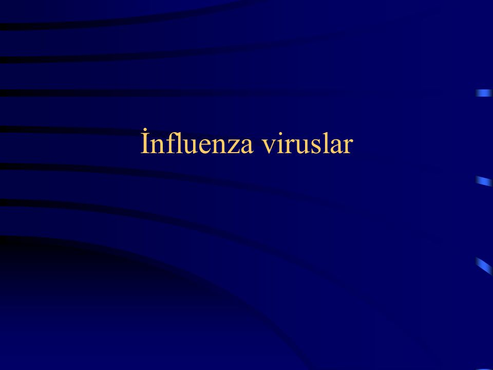İnfluenza viruslar