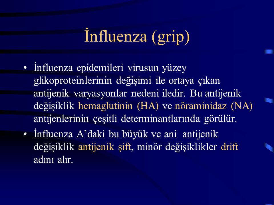 İnfluenza (grip)