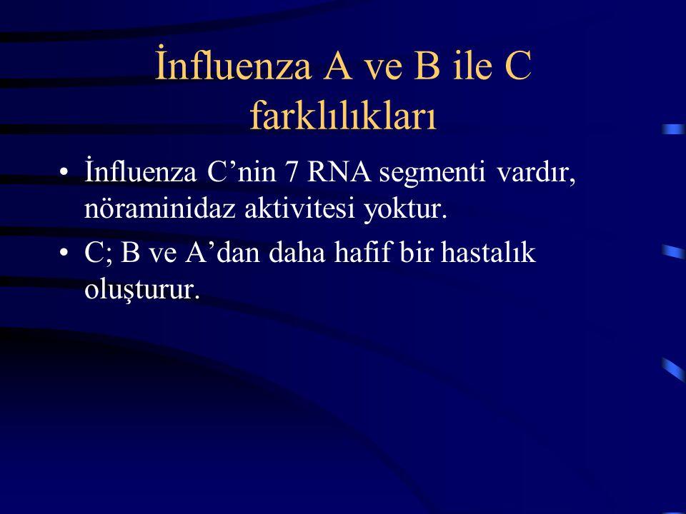 İnfluenza A ve B ile C farklılıkları