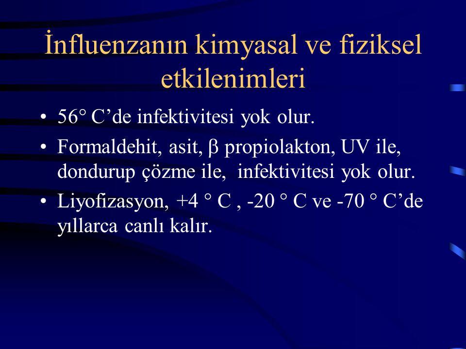 İnfluenzanın kimyasal ve fiziksel etkilenimleri