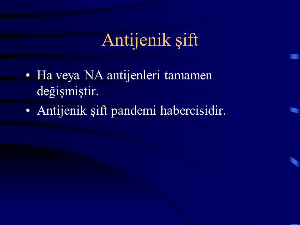 Antijenik şift Ha veya NA antijenleri tamamen değişmiştir.