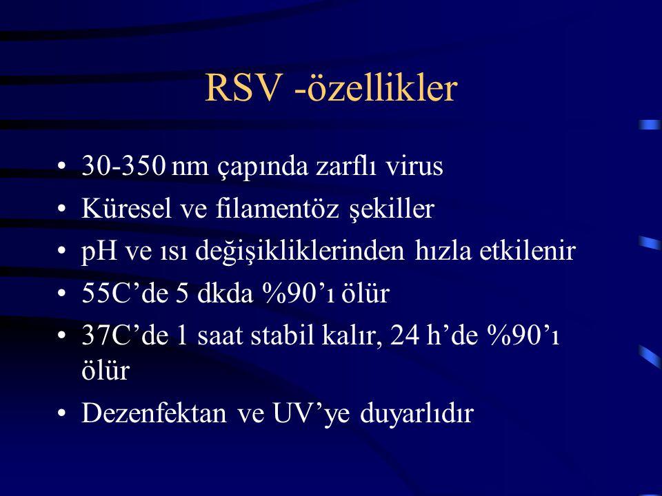 RSV -özellikler 30-350 nm çapında zarflı virus