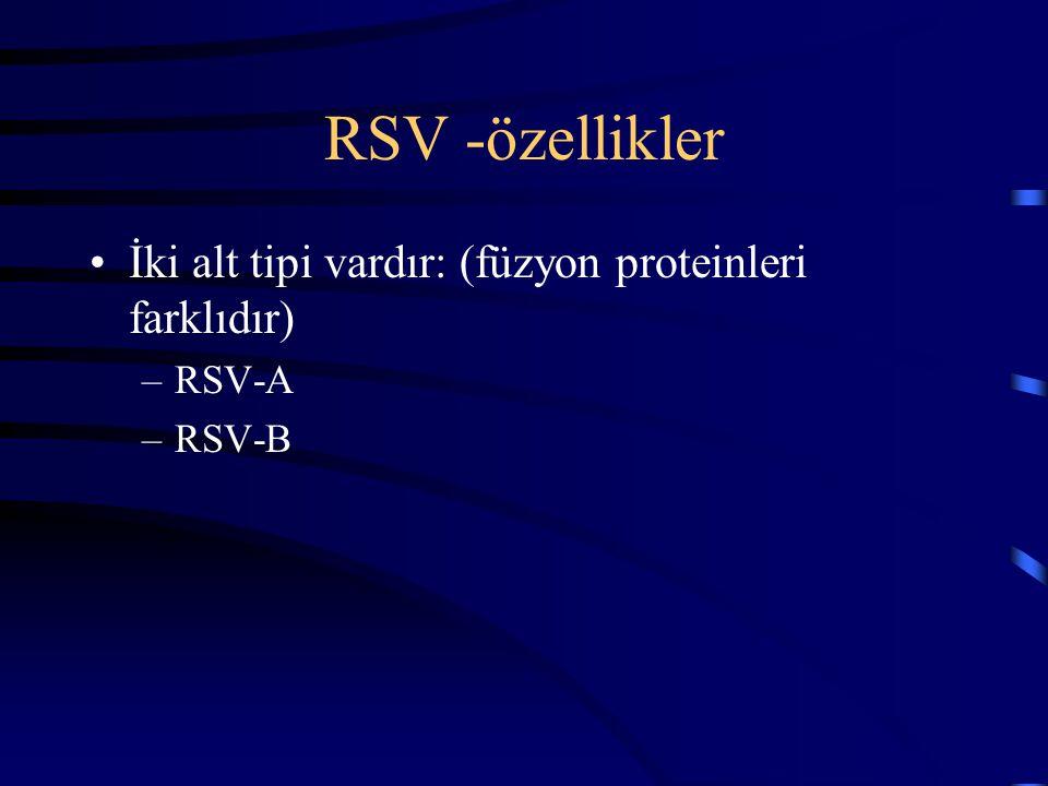 RSV -özellikler İki alt tipi vardır: (füzyon proteinleri farklıdır)
