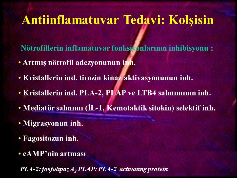 Antiinflamatuvar Tedavi: Kolşisin