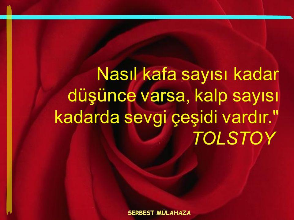Nasıl kafa sayısı kadar düşünce varsa, kalp sayısı kadarda sevgi çeşidi vardır. TOLSTOY