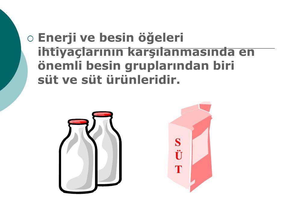 Enerji ve besin öğeleri ihtiyaçlarının karşılanmasında en önemli besin gruplarından biri süt ve süt ürünleridir.