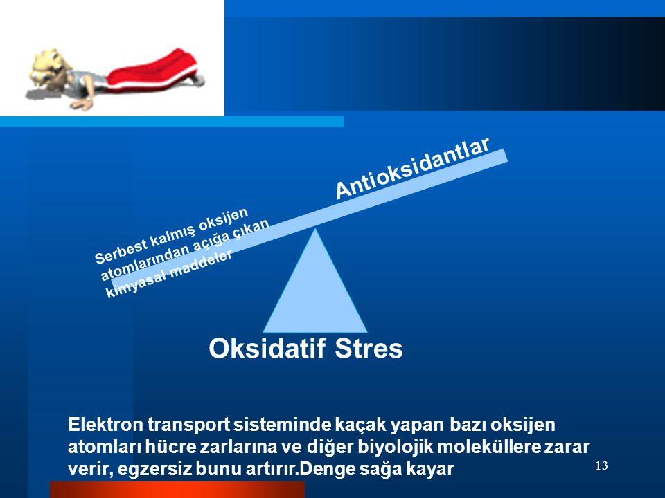 Oksidatif Stres Antioksidantlar