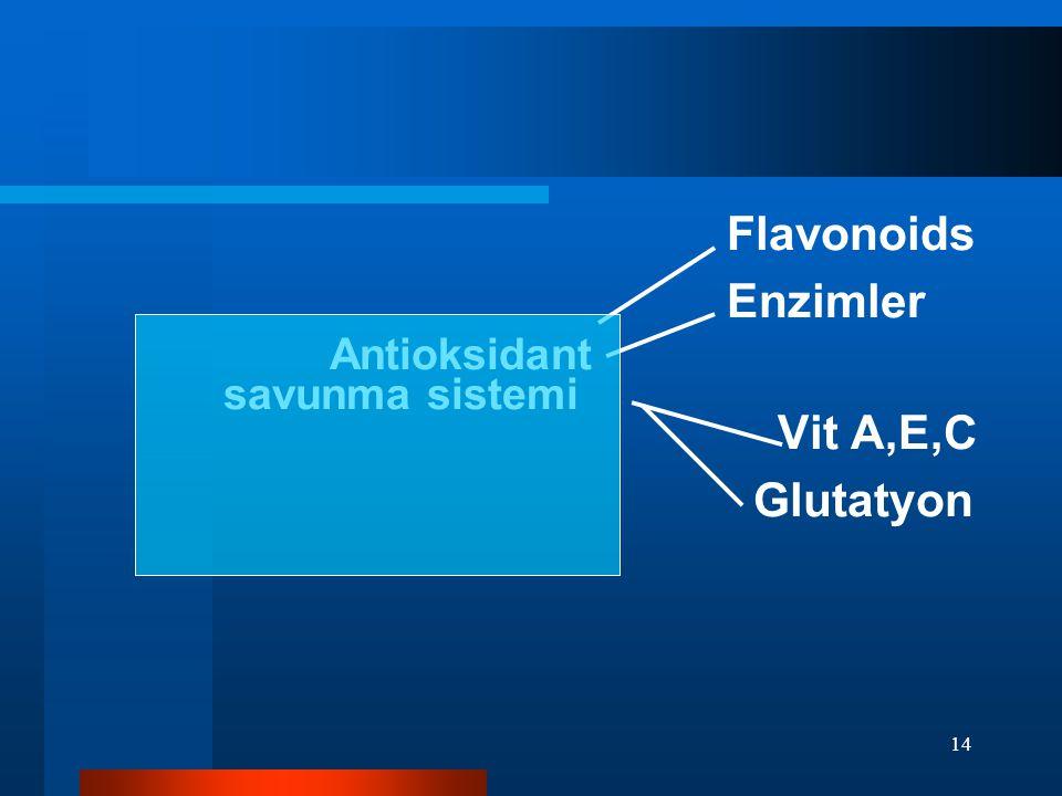 Flavonoids Enzimler. Antioksidant savunma sistemi Vit A,E,C.