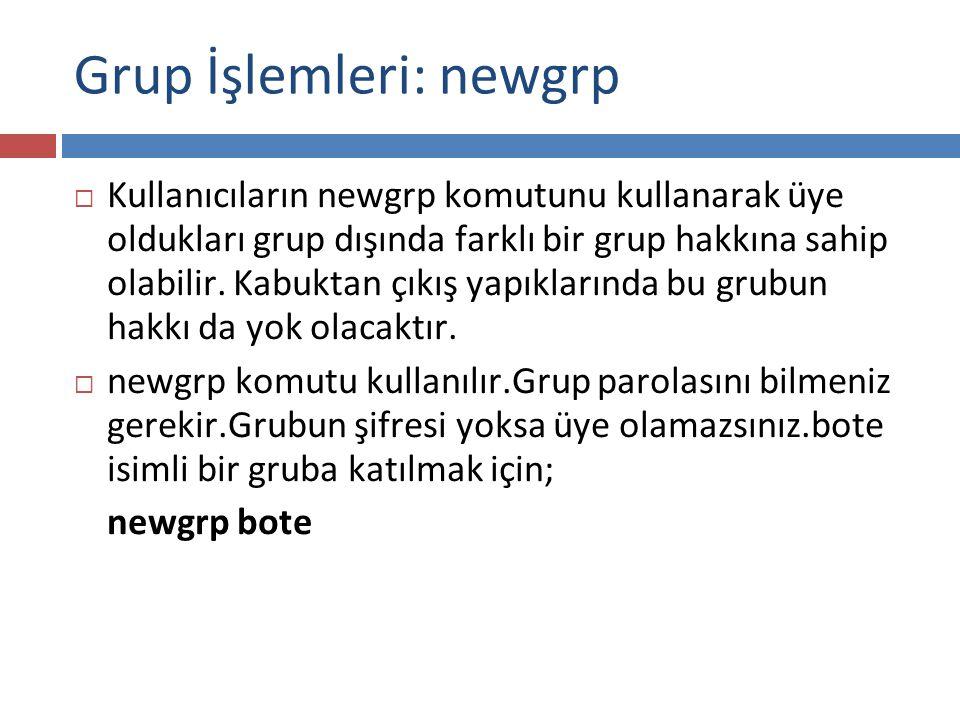 Grup İşlemleri: newgrp