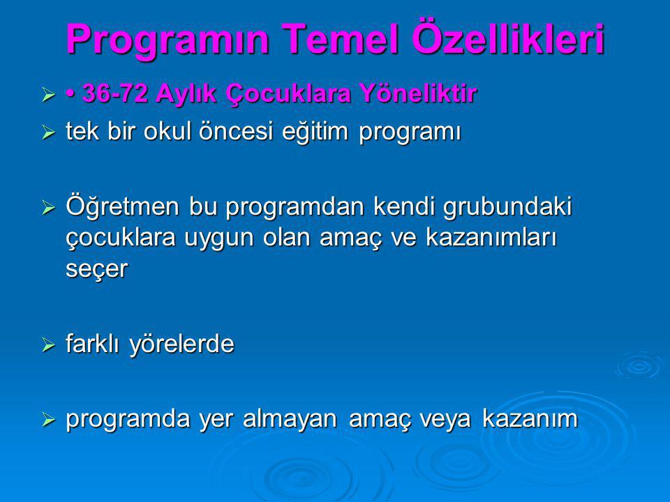 Programın Temel Özellikleri