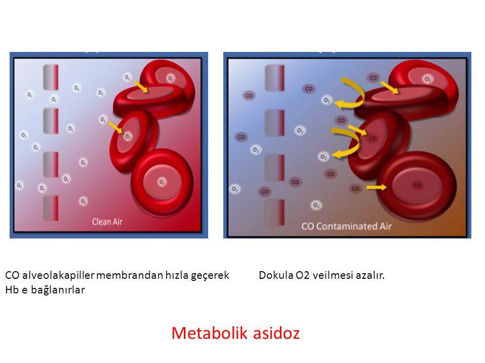 CO alveolakapiller membrandan hızla geçerek Hb e bağlanırlar