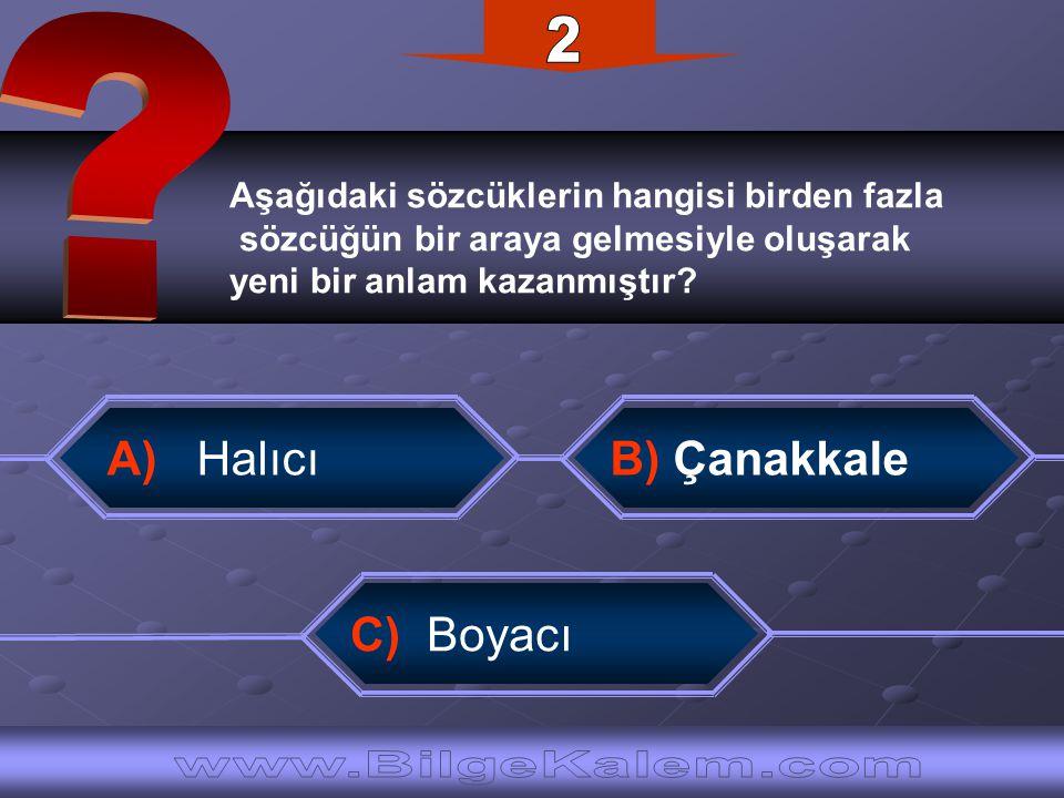 2 www.BilgeKalem.com A) Halıcı