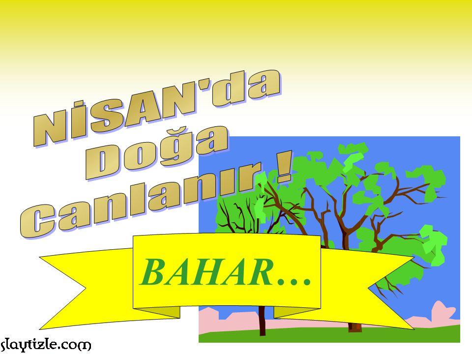 BAHAR… NİSAN da Doğa Canlanır !