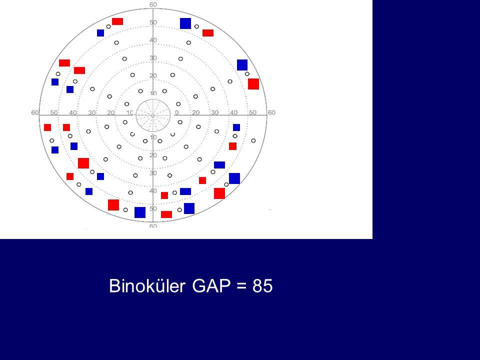Binoküler GAP = 85