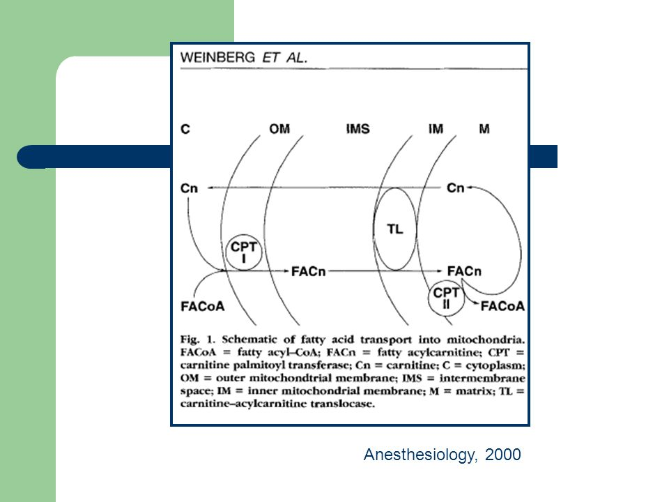Anesthesiology, 2000