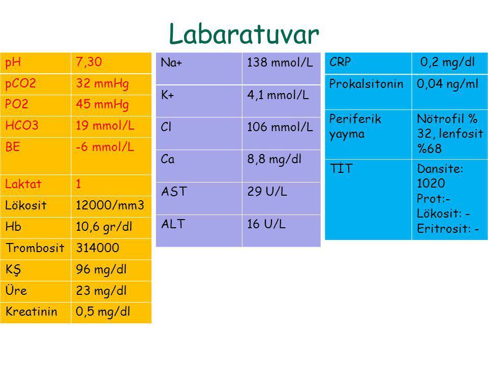 Labaratuvar pH 7,30 pCO2 32 mmHg PO2 45 mmHg HCO3 19 mmol/L BE