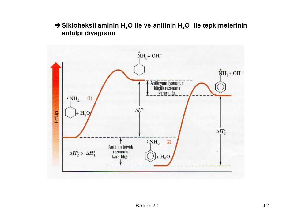 Sikloheksil aminin H2O ile ve anilinin H2O ile tepkimelerinin entalpi diyagramı
