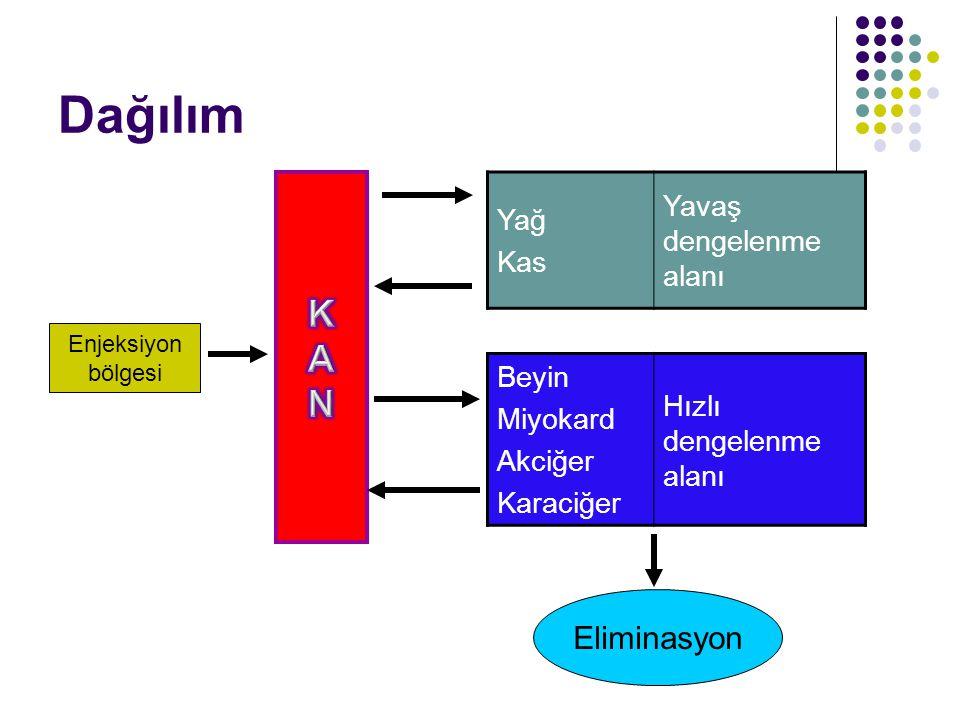 Dağılım K A N Eliminasyon Yavaş dengelenme alanı Yağ Kas Beyin