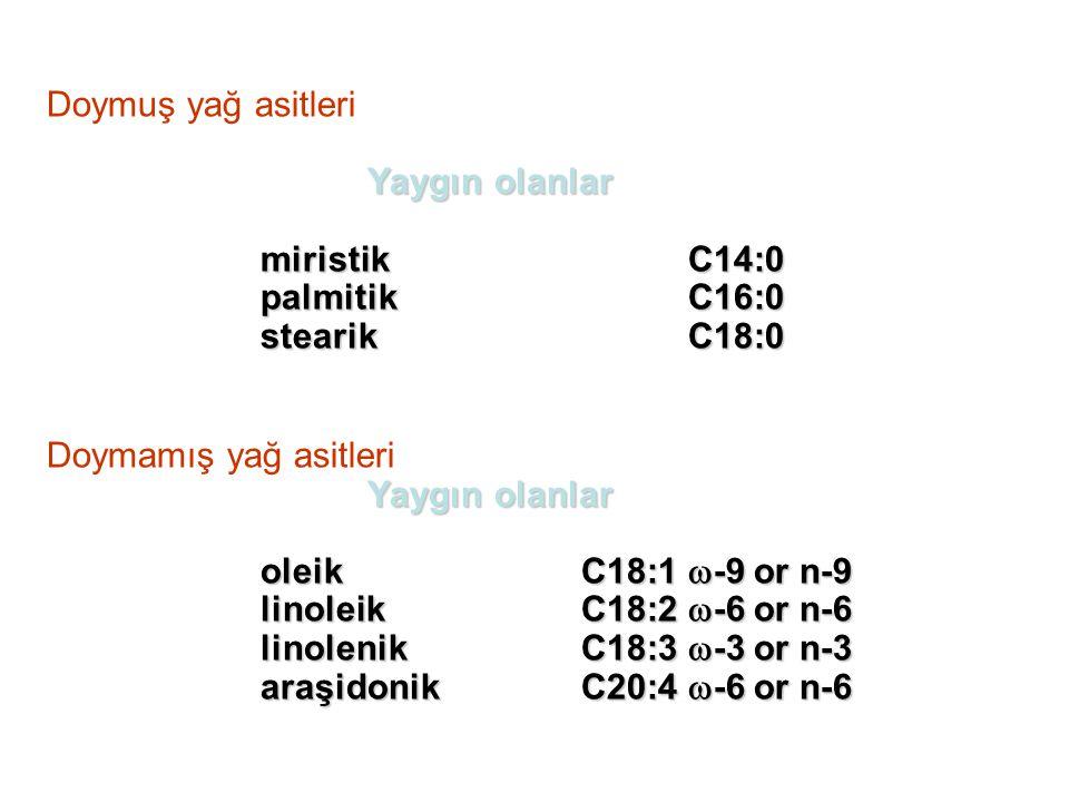 Doymuş yağ asitleri Yaygın olanlar. miristik C14:0. palmitik C16:0. stearik C18:0. Doymamış yağ asitleri.