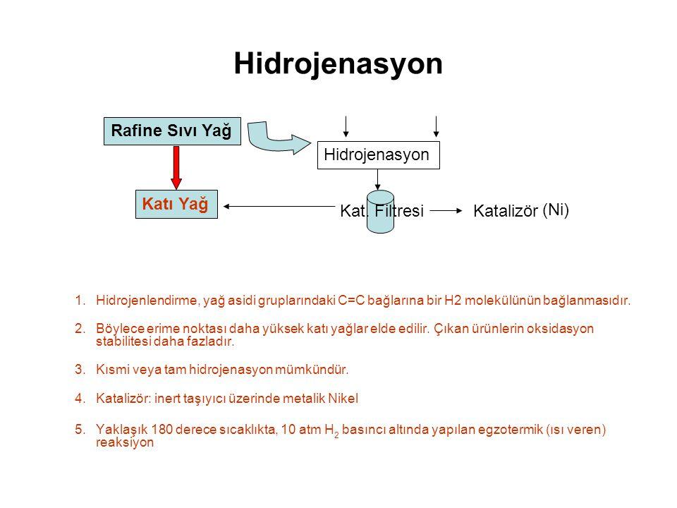 Hidrojenasyon Rafine Sıvı Yağ Hidrojenasyon Katı Yağ Kat. Filtresi