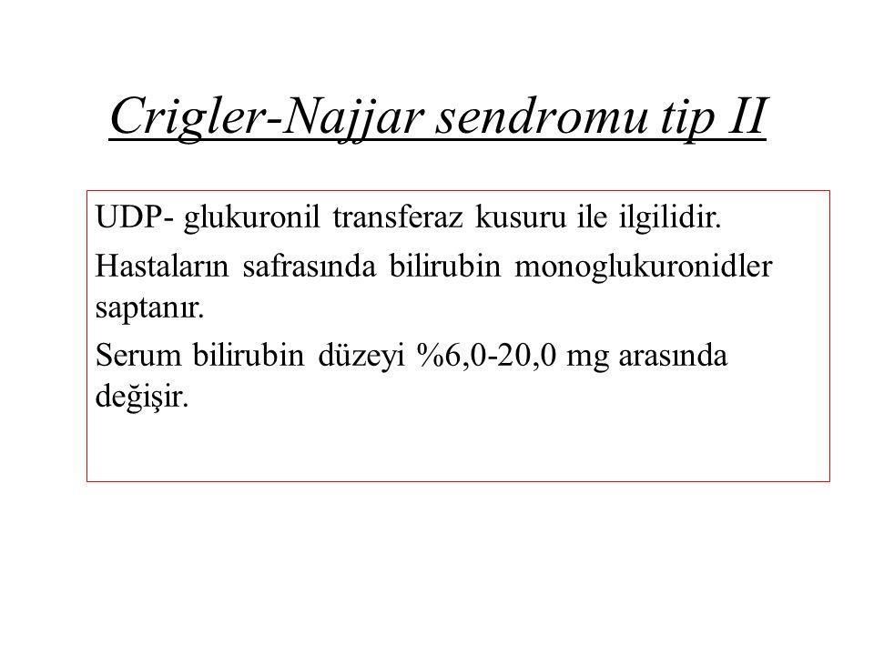 Crigler-Najjar sendromu tip II