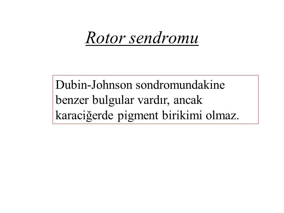 Rotor sendromu Dubin-Johnson sondromundakine benzer bulgular vardır, ancak karaciğerde pigment birikimi olmaz.