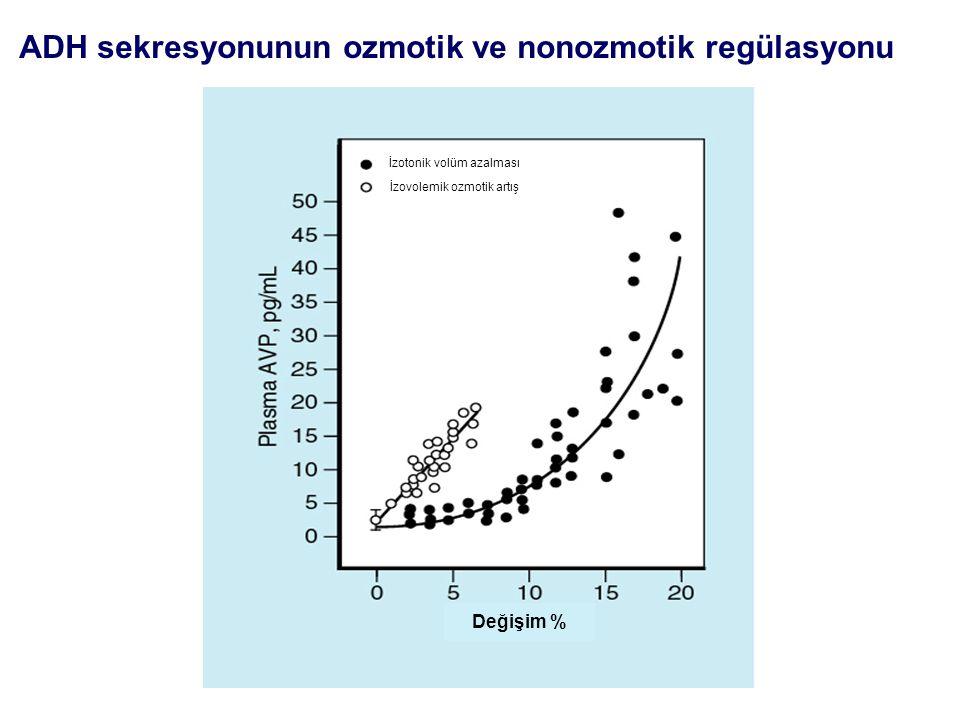ADH sekresyonunun ozmotik ve nonozmotik regülasyonu