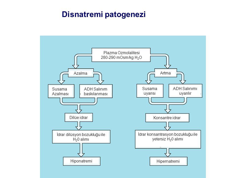 Disnatremi patogenezi