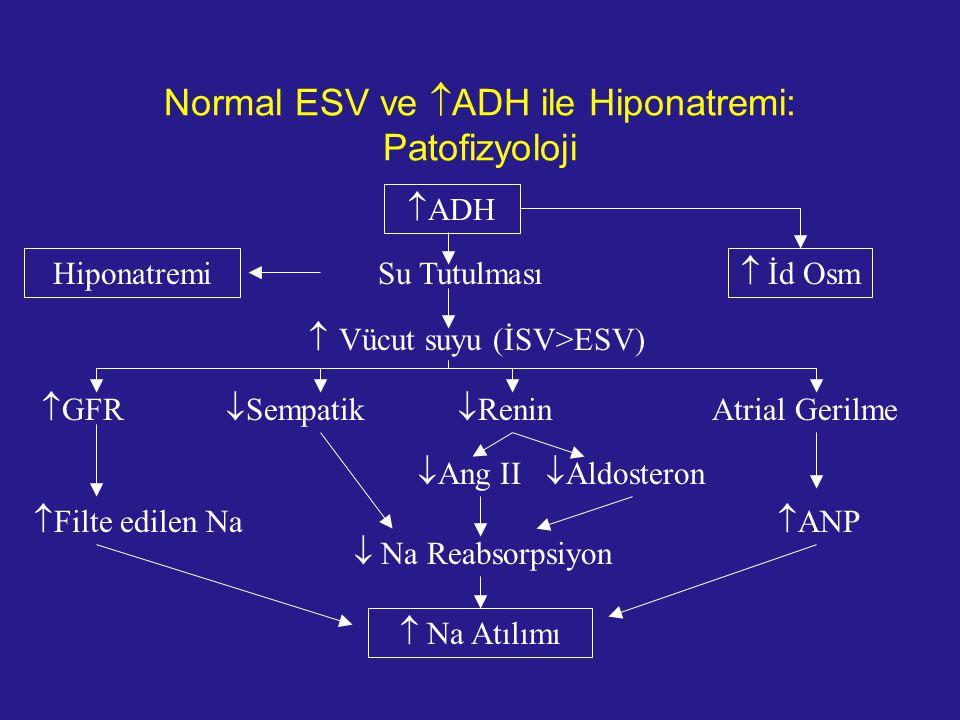 Normal ESV ve ADH ile Hiponatremi: Patofizyoloji