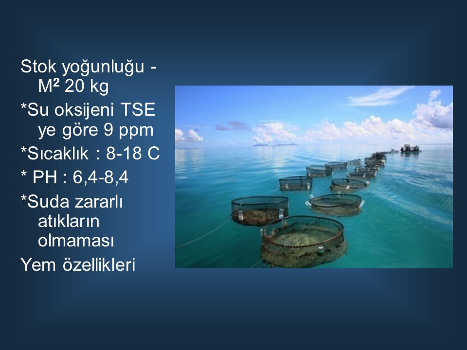 Stok yoğunluğu - M2 20 kg *Su oksijeni TSE ye göre 9 ppm. *Sıcaklık : 8-18 C. * PH : 6,4-8,4. *Suda zararlı atıkların olmaması.