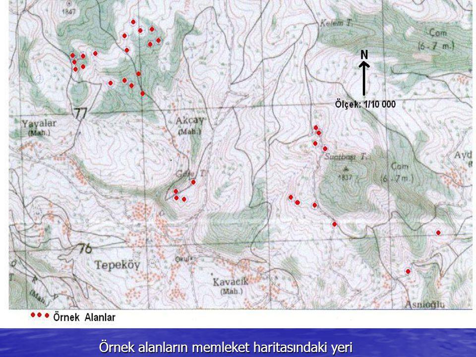 Örnek alanların memleket haritasındaki yeri