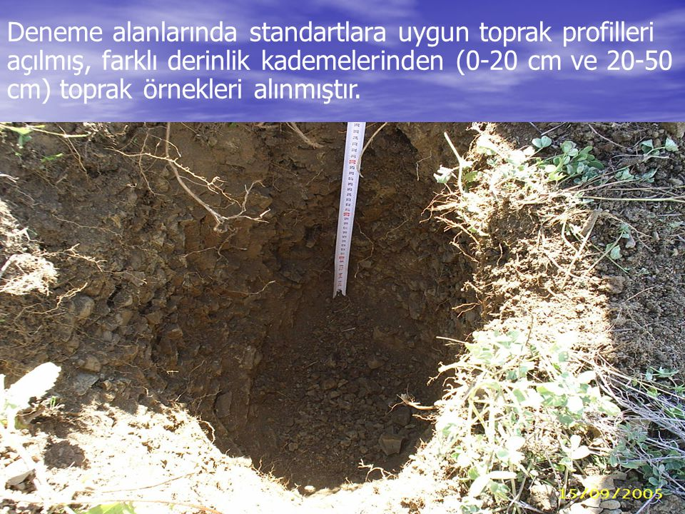 Deneme alanlarında standartlara uygun toprak profilleri açılmış, farklı derinlik kademelerinden (0-20 cm ve 20-50 cm) toprak örnekleri alınmıştır.