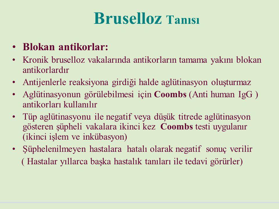 Bruselloz Tanısı Blokan antikorlar: