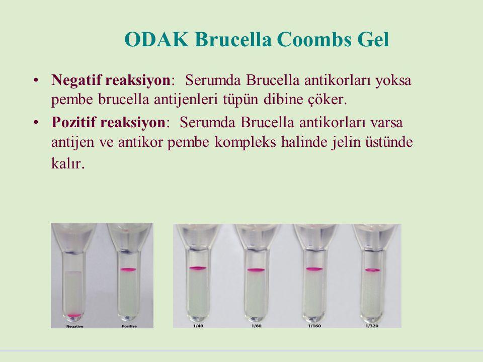 ODAK Brucella Coombs Gel